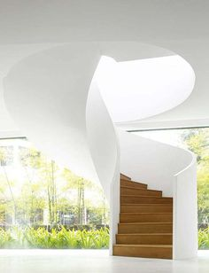 Spiral staicase to roof deck with skylight bringing light shaft down