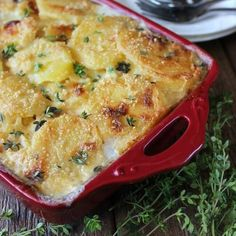 Dairy Free Herbed Scalloped Potatoes is comfort food at it's best. Potatoes baked in a casserole and covered with a creamy white sauce.