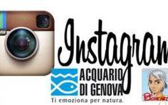 Foto su Instagram per gita gratuita all'acquario di Genova! #gratiacquariogenova #instagram