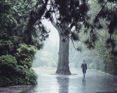 Google 이미지 검색결과: http://1.bp.blogspot.com/-wFnVLe4ihFg/TaWMwb2vRTI/AAAAAAAAA8w/9CwNf3gfwq0/s1600/prague_guard_rain.jpg
