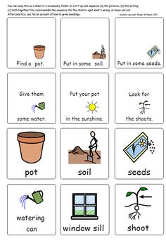 Symbols (c) Widgit Software Illustrated vocabulary pages with simple planting and growing sequence and parts of plants/ Count down in plant Art Activities For Toddlers, Spring Activities, Preschool Activities, Kindergarten Special Education, In Kindergarten, Primary Teaching, Teaching Resources, The Tiny Seed, Preschool Garden