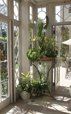 Conservatory | Flickr - Photo Sharing!