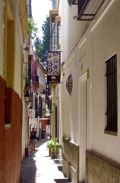 Spain, Santa Cruz, The Neighborhood, Street, Sevilla, Sevilla Spain, Spanish