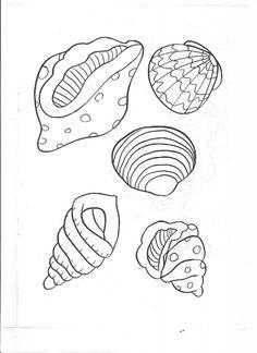 Deniz Kabugu Resmi Boyama Coloring Free To Print