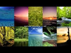 ▶ Nature Sound Collection 11-20 - Super Long Nature Sound 8hour - - YouTube