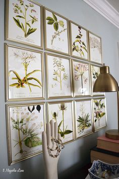 DIY botanical gallery wall in a master bedroom using free floral printables and dollar store frames Earthy Home Decor, Diy Home Decor Rustic, Inexpensive Home Decor, Diy Wall Decor, Cheap Home Decor, Room Decor, Botanical Gallery Wall, Botanical Prints, Botanical Decor