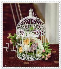 colivie cu  flori