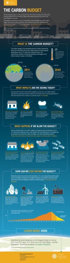 Infographic: The Global Carbon Budget | Understanding the Intergovernmental Panel on Climate Change Reports #ipcc #ar5