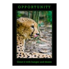 Opportunity Poster