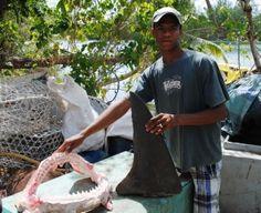 Sustainable shark fishing in the Seychelles via Mangrovesforthefuture.org
