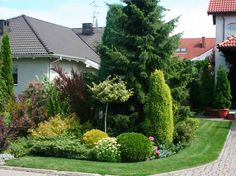 Ogród Privacy Landscaping, Landscaping Tips, Garden Landscaping, Backyard, Patio, Garden Landscape Design, Garden Projects, Tourism, Nova