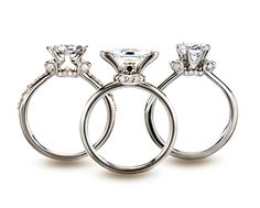 Shelly Purdy Platinum rings