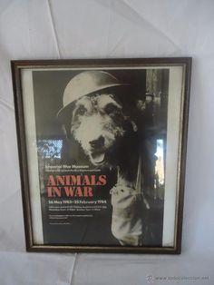 CARTEL ENMARCADO ANIMALS IN WARS . EXPOSICIÓN DEL MUSEO IMPERIAL WAR MUSEUM.1984