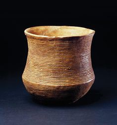ARTICLE Prehistoric pop culture: Deciphering the DNA of the Bell Beaker Complex - Current Archaeology