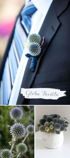 Globe thistle boutonnière: unique and not too feminine!