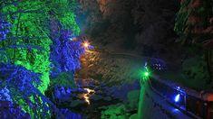 Wanderung durch die Talbachklamm mit Rahmenprogramm am 8. & 15. Dezember 2018 © Herbert Raffalt Advent, Wilde, Seen, Aquarium, December, Tours, Hiking, Goldfish Bowl, Aquarium Fish Tank