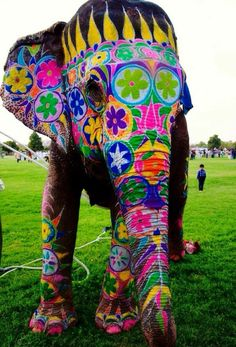 indische kultur elefant bemalt