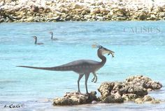 (maybe he was indeed an early ornithomimid with good anatomical adaptions for catching fish). Dinosaur Pictures, Dinosaur Fossils, The Good Dinosaur, Extinct Animals, Prehistoric Creatures, Animal Species, Crocodiles, Fun Time, Creature Design