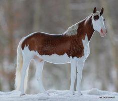 GORGEOUS model horse
