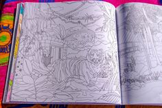 96 Best Coloring Pages Images On Pinterest Books Legendary Landscapes Book Journey Review
