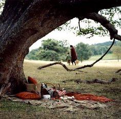 picnic//