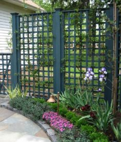 These dark lattice screen have a very oriental feel ... serene like a Japanese garden.
