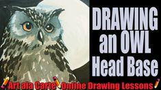 Drawing an Owl Head Base plus rambling thoughts