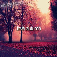 The beautiful changing leaves the smell of hot chocolate in the air and the cumpy sweaters that cover my hands.