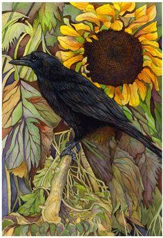 Google Image Result for http://www.paintingsilove.com/uploads/9/9841/sunflower-crow.jpg