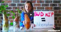 A little girls project shows us why we need to choose organic produce.  (video at end of link)