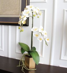 Our artificial flowers are the most realistic and lifelike silk flowers available; this set of orchid leaves & roots with a stunning gold planter is a perfect imitation of the real thing Gold Planter, Metal Planters, Orchid Leaves, Phalaenopsis Orchid, White Orchids, Brass Color, Artificial Flowers, Silk Flowers, Roots