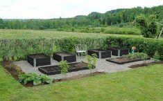 Raised Vegetable Garden Beds Can Be A Great Gardening Option – Handy Garden Wizard Vege Garden Ideas, Herb Garden Design, Vegetable Garden Design, Starting Seeds Indoors, Farm Gardens, Gras, Garden Styles, Garden Beds, Garden Projects