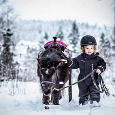 Mini horse and rider in the snow! Most Beautiful Animals, Beautiful Horses, Pretty Horses, Horse Love, Horse Girl, Horse Pictures, Cute Pictures, Beautiful Pictures, Animals For Kids