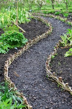 Willow-weave path at RHS Harlow Carr. ... make similar but a bit taller - and because we have a linear design, we can keep the rods further apart/change dimension of rods at intervals More