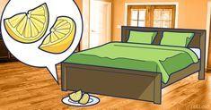 Se metti una fetta di limone vicino al letto, rimarrai sorpreso/a! Quello che succederà durante la notte è davvero meraviglioso.