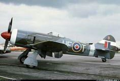 Hawker Tempest Mk II
