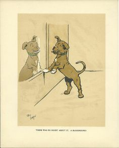 Cecil Aldin c1914 Rare Original Antique Vintage Dog Art Print MATTED