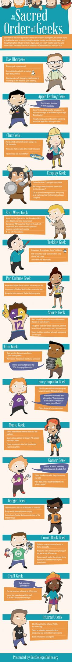 What Kind of Geek are You? [INFOGRAPHIC] #Geek #Hierarchy #Geekdom - yes there is a pecking order :)