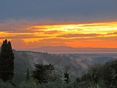 My wedding colors in a photo of Tuscany. Moss green, lite blue, terra cotta and dusty pink, just a hint of sunshine.
