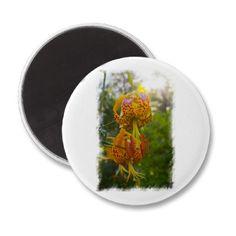 Humboldt Lilies Sunburst Refrigerator Magnets #gift #photogift #zazzle