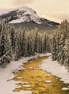 Maligne River in Winter - Jasper National Park, Alberta