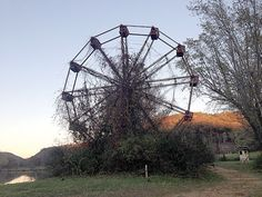 As dying rays of a setting sun light fall foliage ablaze, a giant, rusted Ferris wheel — overgrown with weeds and foliage — stands as a stark and stoic reminder of carefree moments of yesterday.
