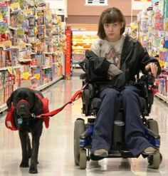 """""""I used to be the kid in the wheelchair, Now, I'm the kid with the amazing dog.""""  Service dog pulling wheelchair***"""