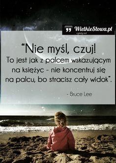 Nie myśl, czuj! #Lee-Bruce,  #Różne