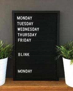 Super quotes funny office so true 55 ideas Weekend Quotes, Monday Quotes, Me Quotes, Funny Quotes, Light Box Quotes Funny, Wisdom Quotes, Word Board, Quote Board, Message Board