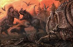 8 times nature was totally metal in 2020 | Live Science Volcano Lightning, Dinosaure Herbivore, Lightning Images, Labrador, Carnivore, Museum Displays, Extinct Animals, Prehistoric Creatures, Tyrannosaurus