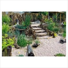 Seaside garden planted with a range of grasses and driftwood steps. This would br good with some big stones and sea pinks.  I love the driftwood idea.