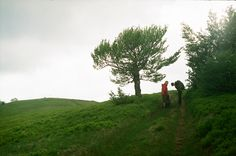 Borzhava , Ukrainian Carpathians / camera: Zenit 12сд / film: Kodak Color Plus 200