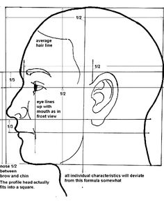 825942-face_proportions_side_WC