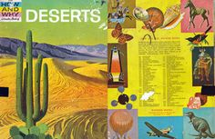 the wonder book of how and why: deserts.